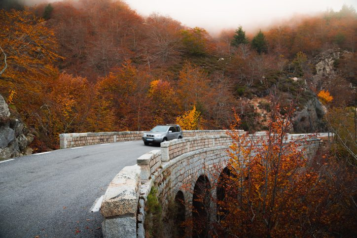 5 Driving Safety Tips for the Fall